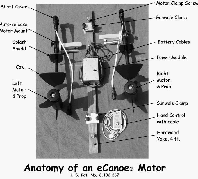 Anatomy Of An Ecanoe Motor